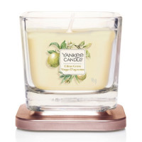 Yankee Candle Small Jar Citrus Glove